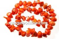 Coral, portocaliu intens, discuri in forma naturala, 10-19mm