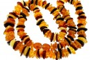 Baltic amber, necklace chips, 9.5-11mm