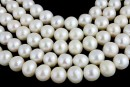 Freshwater Pearls - 8.5mmx7.5-8mm white