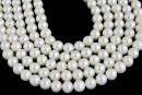Perle de cultura - 6x5.5mm, alb