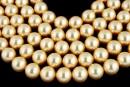 Swarovski pearls, gold, 14mm - x2