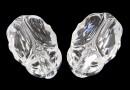 Swarovski, scarabeus bead aurore crystal, 12mm - x1